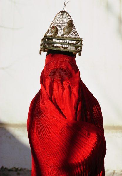© 2011 GeographicÊ Nacional Kabul, Afganistán, 1967 | Cubierto por una chadri tradicional, una mujer afgana saldos enjaulados jilgueros en un mercado en Kabul. Foto por Thomas J. Abercrombie