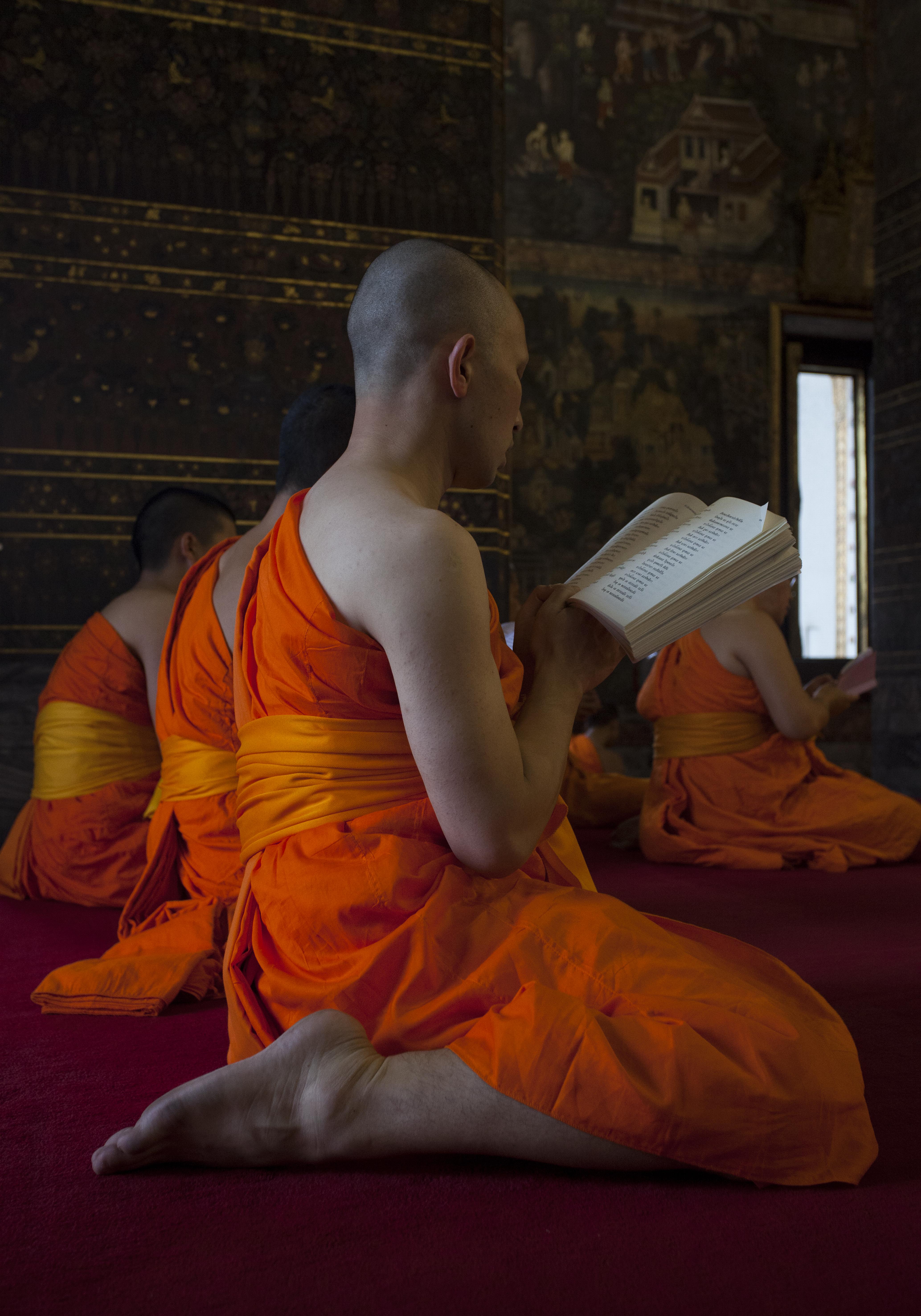 Bhavana, cultivo de la mente