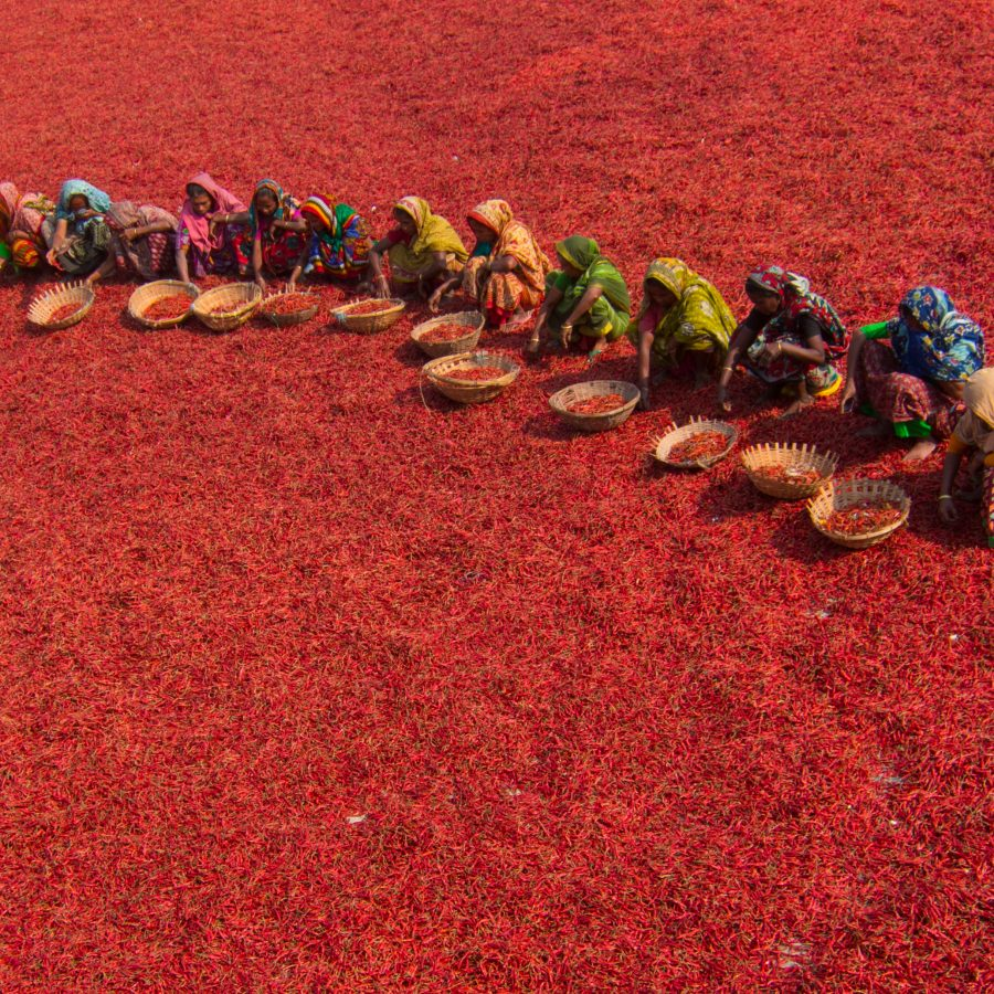 Azim Khan Ronnie_Red Carpet