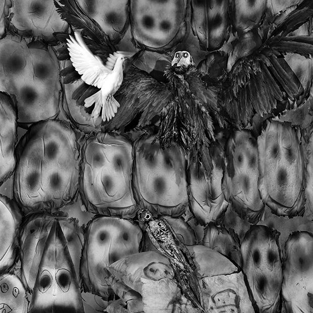 Asylum Of The Birds – Good and Evil
