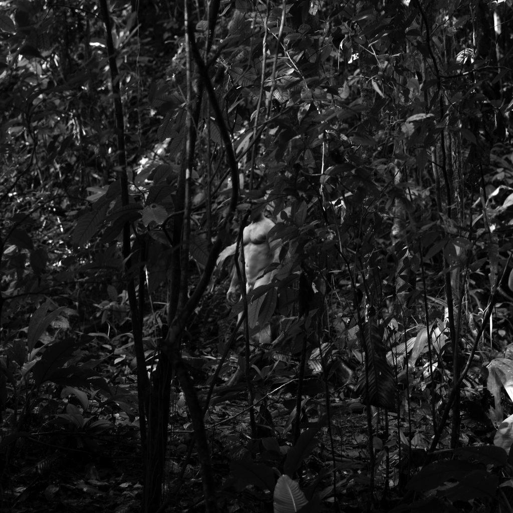 Blanco en selva cuadrado